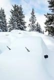 1 автомобиль покрыл снежок Стоковые Изображения
