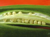 1 бамия Стоковые Изображения RF