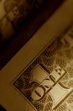 1 близкий доллар вверх Стоковая Фотография