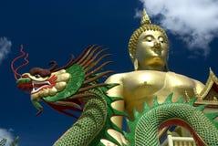 1 большой дракон Будды Стоковые Фотографии RF
