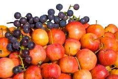 1 виноградина яблок Стоковые Изображения