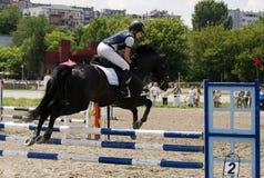 1 жокей лошади барьера скачет сверх Стоковые Фото