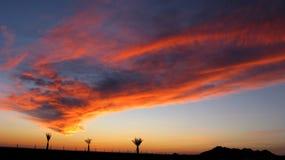 1 заход солнца puerto penasco Стоковая Фотография RF