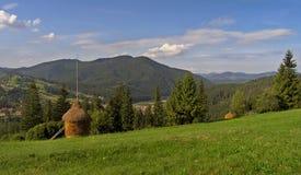 1 зеленый лужок гористый Стоковое Фото