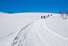 1 катание на лыжах холма вверх Стоковые Изображения