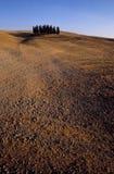 1, котор сгорели cиенна senesi colli Стоковые Фото