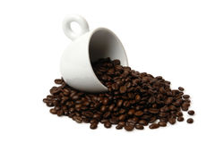 1 кофейная чашка стоковая фотография rf