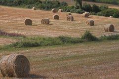 1 ландшафт сена шариков Стоковая Фотография