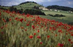 1 ландшафт umbria Стоковое Изображение
