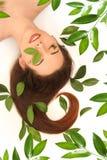 1 мечт зеленый цвет Стоковая Фотография RF