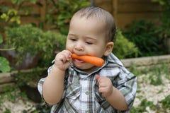 1 морковь младенца милая Стоковые Изображения