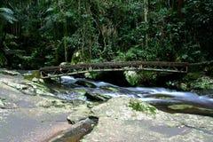 1 мост над потоком Стоковые Фотографии RF