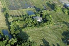 1 над воздушным шаром fields взгляд Стоковые Фотографии RF