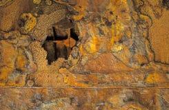 1 отсутствие кораблекрушения ржавчины Стоковые Фото