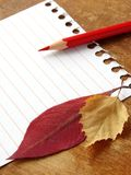 1 памятка листьев Стоковое Изображение RF