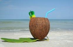 1 питье кокосов Стоковое Изображение