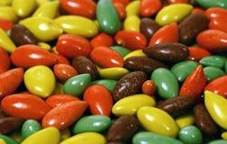 1 покрынная конфета осеменяет солнцецвет Стоковые Фотографии RF