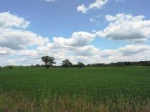 1 поле Мичиган Стоковые Фото