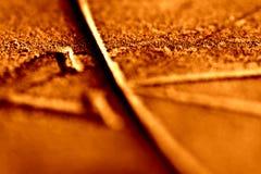 1 померанцовая кричащая текстура sundial Стоковое фото RF