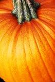 1 померанцовый желтый цвет тыквы Стоковая Фотография RF