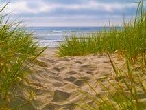 1 путь пляжа к Стоковые Фотографии RF