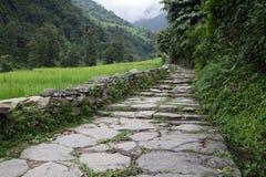 1 путь Стоковая Фотография RF