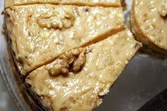 1 расстегай отрезал грецкий орех Стоковое Фото