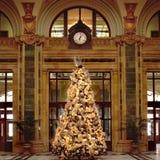 1 рождественская елка Стоковое Фото