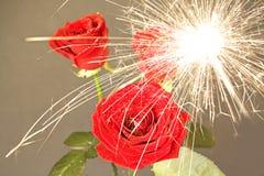 1 роза дождя искрится вниз Стоковая Фотография RF