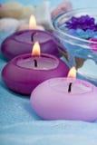 1 свечка тонизированного пурпура цветков Стоковое фото RF