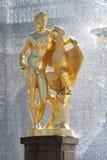 1 святой petersburg peterhof дворца стоковые изображения