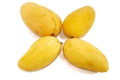 1 серия мангоа тропическая Стоковая Фотография RF
