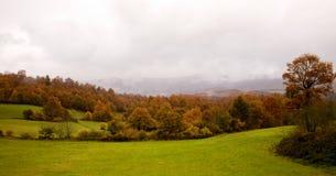 1 страна баска осени Стоковая Фотография RF