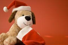 1 счастливый щенок Стоковая Фотография RF