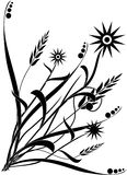 1 флористическое Стоковое Изображение