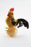 1 цыпленок Стоковое Изображение