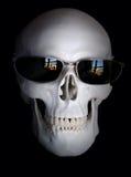 1 череп Стоковые Фото