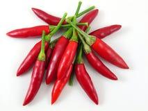 1 чили свежий горячий выбранный красный s Стоковые Фотографии RF