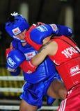 1-ые азиатские игры 2009 боевых искусств Стоковое Изображение