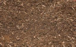 1 10 растущих серий Стоковая Фотография RF