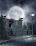 1个哥特式坟园 库存图片