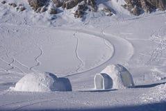 1座冰园屋顶的小屋 库存照片