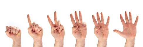 1 2 3 4 5 руки Стоковая Фотография RF