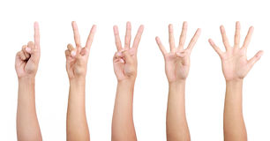 1 2 3 4 5 hand. Gesture of hand showing number with finger from one to five Royalty Free Stock Images