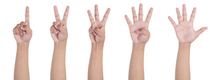 1 2 3 4 5 hand. Set of counting hand sign isolated on white background Stock Image