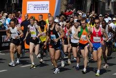 1 23 2010年贝尔格莱德强制马拉松启动时间 免版税库存图片