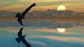 Λίμνη Α1 αετών Στοκ Φωτογραφίες