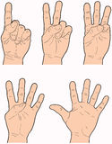 1 5 rąk ilustracja wektor