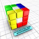 (1) 6 folowali integraci zarządzania ryzyko Fotografia Royalty Free