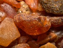 1 amber Fotografering för Bildbyråer